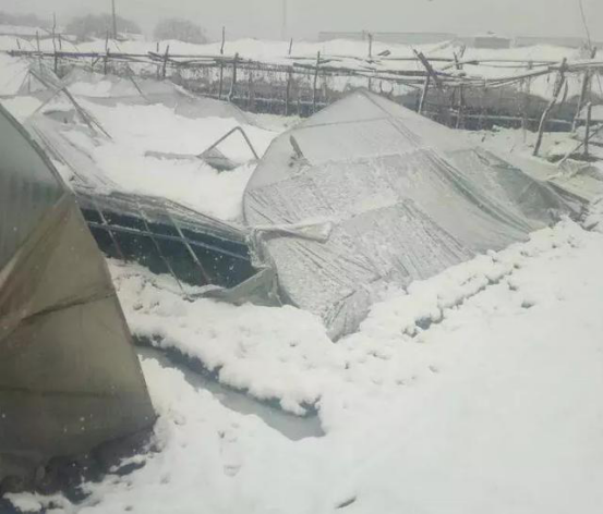 PV power stations were also damage by heavy wind and snow